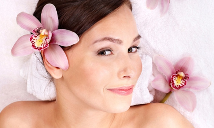 Sei Bella Studio  - Burnside: Sugar-Paste Hair Removal on an Extra-Small, Small, Medium, or Large Body Area at Sei Bella Studio (Up to 57% Off)