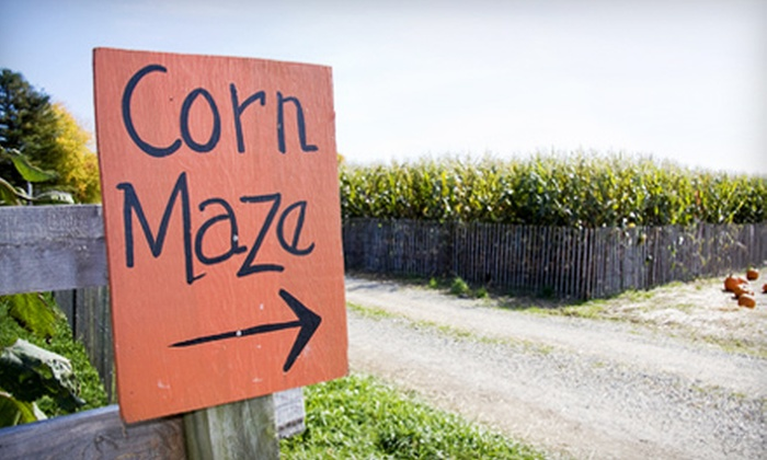 Cornfield Maze Pumpkin Patch - Madera Southeast: Fresno Corn Maze and Pumpkin Patch Outing for Two Adults and Two Children Wednesday–Friday or on Saturday in Madera