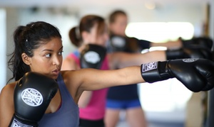 Punch Performance: Four Weeks of Membership and Unlimited Fitness Classes at Punch Performance (70% Off)