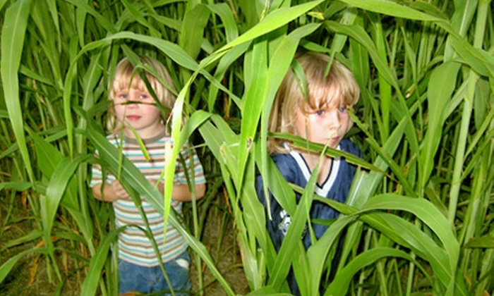 null - Belleview: Corn Maze Festival Outing for One, Two, or Four at Timberline Farm in Belleview