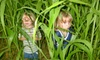 Timberline Farm - Belleview: Corn Maze Festival Outing for One, Two, or Four at Timberline Farm in Belleview