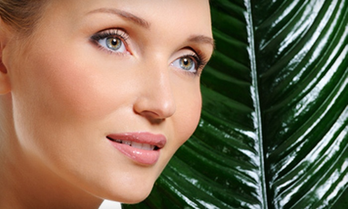 Berkshire Cosmetic And Reconstructive Surgery Center - Eastside: One or Two IPL Photofacials at Berkshire Cosmetic and Reconstructive Surgery Center in Pittsfield, Massachusetts