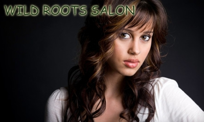Wild Roots Salon - Pewee Valley: Salon Services at Wild Roots Salon in Crestwood. Choose Between Two Options.