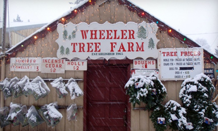 Wheeler Tree Farm - Northwest Clackamas: $20 for Grand Fir Tree and Christmas Tree Cutting Experience at Wheeler Tree Farm in Oregon City (Up to $60 Value)