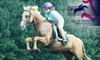 Blue Ribbon Riding Academy - 4: $20 for a Private One-Hour Introductory Riding Lesson at Blue Ribbon Riding Academy in Canton ($40 Value)