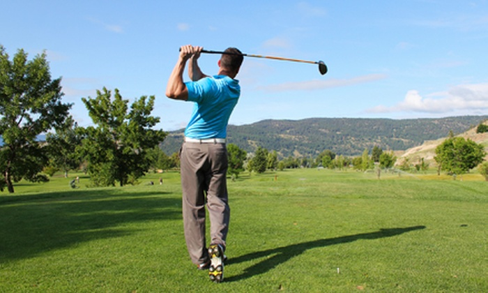 Mt. Freedom Golf - Randolph: Four Weekly 90-Minute Lessons at Mt. Freedom Golf (Up to 56% Off)