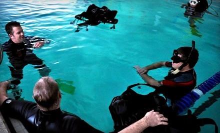 Blue Element Scuba & Adventure: Discover Scuba Diving Class - Blue Element Scuba & Adventure in Salem