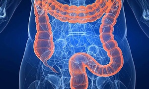 Holistic Healing: Colon Hydrotherapy Session with a Consultation at Holistic Healing