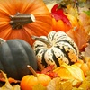 Up to 57% Off Fall Festival in Pisgah Forest