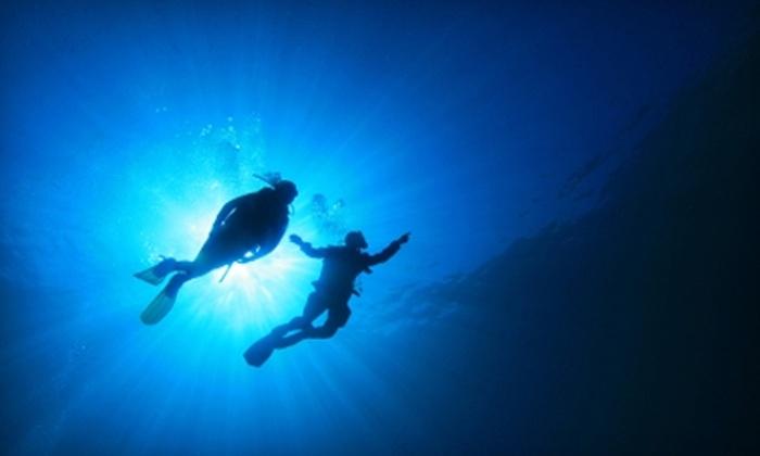 Dive Dive Dive - Lawrenceville: $20 for a Discover Scuba Class at Dive Dive Dive in Lawrenceville ($99 Value)