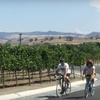 Half Off Bicycle Tour in Livermore