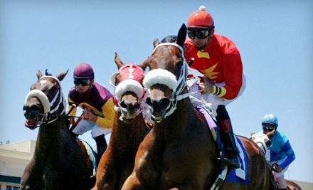 Gulfstream Park: Two Seats in the Silks Simulcast Center, Two Programs, and Two $5 Bet Vouchers - Gulfstream Park in Hallandale Beach