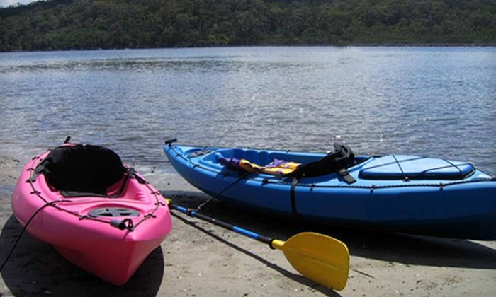 Kayak Nature Adventures - Bayview: Full-Day Single or Double Kayak Rental from Kayak Nature Adventures in Gulfport