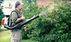 Advantage Pest Services - Jackson: Insect-Control Services with Termite Inspection from Advantage Pest Services (Up to 71% Off). Three Options Available.