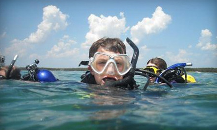 Pirates Cove Scuba - Central Oklahoma City: Scuba Certification Class or Introductory Dive at Pirates Cove Scuba (Up to 60% Off)