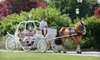 Charleston Carriage Works - Downtown: $60 for a Themed Cinderella Carriage Ride for Up to Six from Olde Towne Carriage Company ($125 Value)