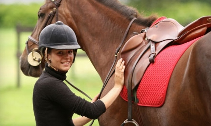 Karin's Horse Connection - Grandville: $25 for One 60-Minute Riding Lesson or Two 30-Minute Kids' Riding Lessons at Karin's Horse Connection in Grandville ($50 Value)