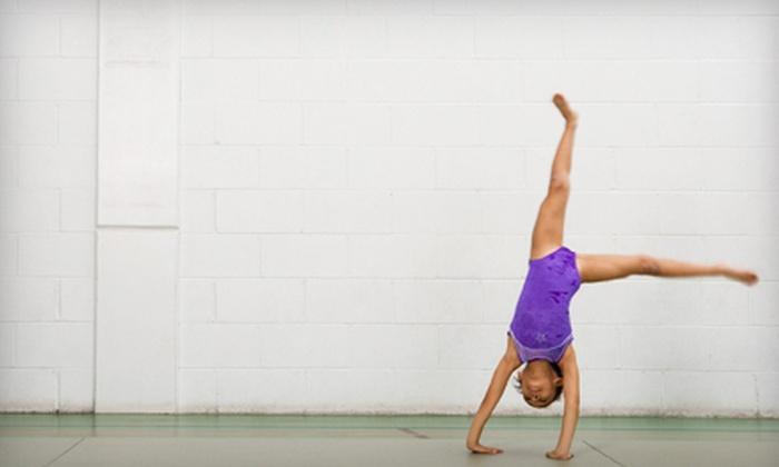 Gymnastics Northwest - Industrial Corridor: Tumble Bugs or Youth Gymnastics Classes, Gymnastics Party, or Open-Gym Visits at Gymnastics Northwest (Up to 61% Off)