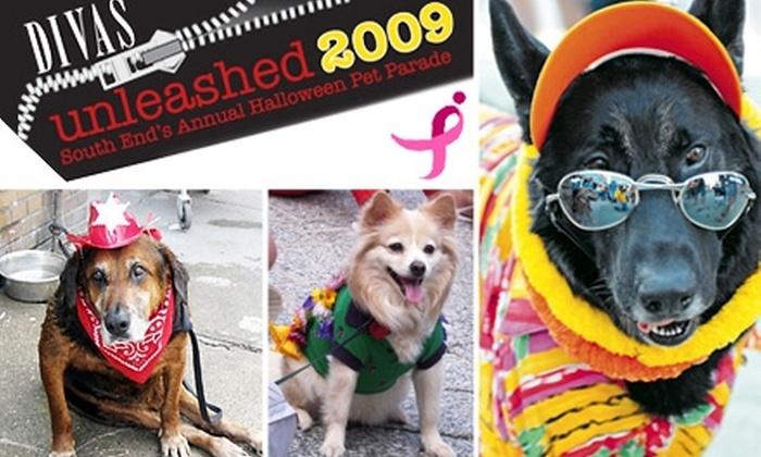DoggieDay  - South End: $25 for VIP Registration to DoggieDay Halloween Pet Parade