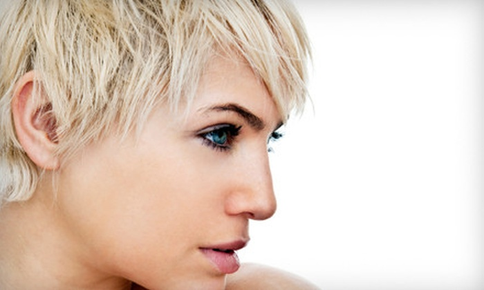 Scissors Rox Paper - Paradise Valley: Shampoo, Blow-Dry, and Style with Optional Conditioning Treatment or Updo at Scissors Rox Paper (Up to 64% Off). Three Options Available.