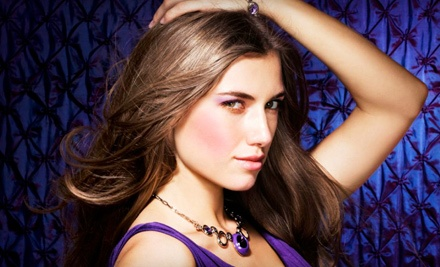 Shampoo and Blowout (a $25 value) - The Hair Spa  in St. Petersburg