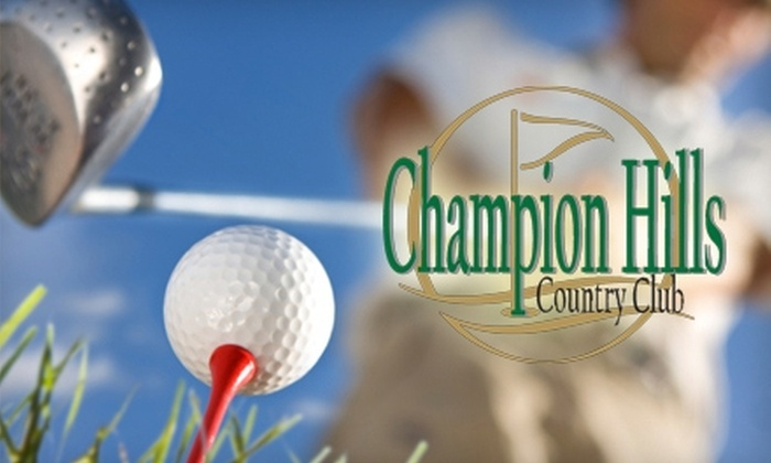 Darlene Sommer Golf Learning Center - Victor: $30 for 3-D Swing Analysis from Darlene Sommer Golf Learning Center at Champion Hills Country Club in Victor ($75 Value)