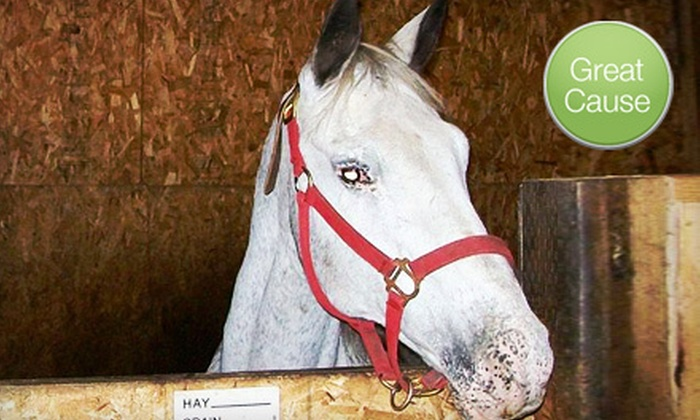 Hopes for Horses - Town Center: $10 Donation for Medical Care for Abused Horse