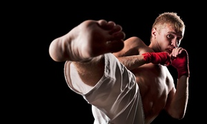 Evolve Martial Arts and Fitness: One or Two Months of  Krav Maga or Kickboxing Classes at  Evolve Martial Arts and Fitness (Up to 75% Off)