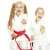 54% Off Martial-Arts Lessons