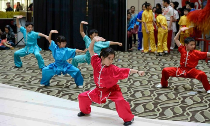 Professional Martial Arts Academy** - Oakbrook Commerce Center: $43 for $170 Groupon — Professional Martial Arts Academy