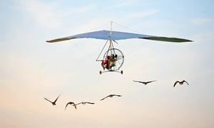 Achille Cesarano: Esperienza di volo in deltaplano biposto per una o 2 persone da Achille Cesarano (sconto fino a 60%)