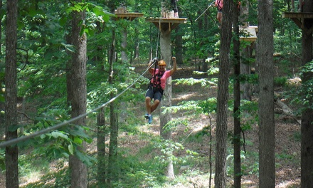 2.5-Hour Outdoor Canopy Challenge Course for One, Two, Four, or Six at Canopy Challenge Course (Up to 54% Off)