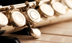 Raaga Music: $40 for $80 Groupon - Indian Classical Music Singing and Flute — RAAGA MUSIC