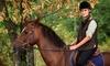 5 o 10 lezioni di equitazione
