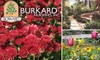 Burkard Nurseries - West Central: $25 for $50 Worth of Plants and Gardening Products from Burkard Nurseries