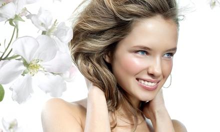 Up to 51% Off Hair Coloring at Manu International Salon - Carol Haas Hair Design