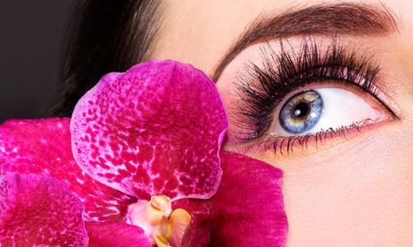 Wimpernverlängerung mit bis zu 80-100 Wimpern pro Auge im Studio SWZ Kamen ab 39,90 €