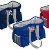 MLB Junior Caddy. 12 Teams Available.