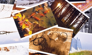 Your Custom Graphics, Llc: $50 for $100 Worth of Photo Printing — Your Custom Graphics, LLC