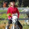 65% Off Horseback-Riding Lessons