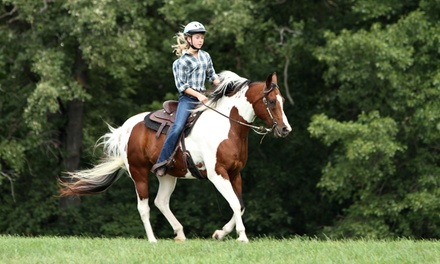 Three or Five Private, One-Hour Horseback-Riding Lessons at Rancho La Rosa (Up to 60% Off)