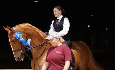 One Private 60-Minute Horse-Riding Lesson or Two Private 30-Minute Horse-Riding Lessons (a $60 value) - Twin Lakes Stable in Moulton