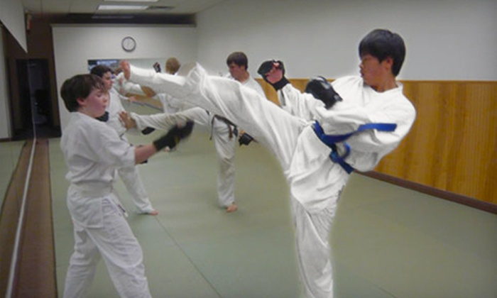 Darien Martial Arts Academy - Noroton Heights: 10 or 20 Kids' Martial-Arts Classes at Darien Martial Arts Academy (Up to 90% Off)