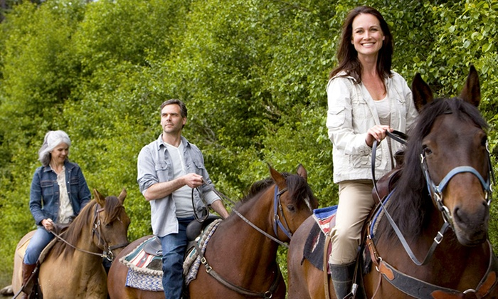 Silver Bit & Spur Farm - Readington: 60-Minute Horseback Trail Ride for Two or Four from Silver Bit & Spur Farm (Up to 44% Off)