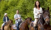 Silver Bit & Spur Farm - Hiltonia: 60-Minute Horseback Trail Ride for Two or Four from Silver Bit & Spur Farm (Up to 49% Off)