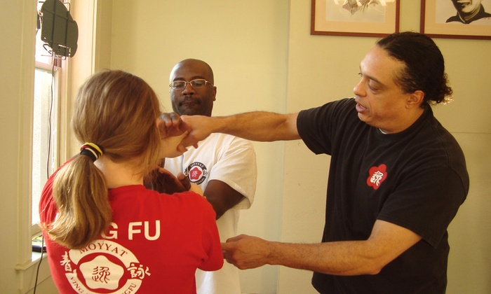 Richmond Moy Yat Kung Fu Academy - The Fan: $20 for $40 Worth of Martial-Arts Lessons — Moy Yat Kung Fu Academy