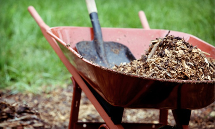 Silver Creek Materials - Fort Worth: Organic Mulch, Soil Mixes, and Compost at Silver Creek Materials (Up to 60% Off). Two Options Available.