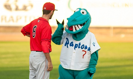 Admission to Four or Six Minor-League Baseball Games with Ogden Raptors Professional Baseball Club (33% Off)