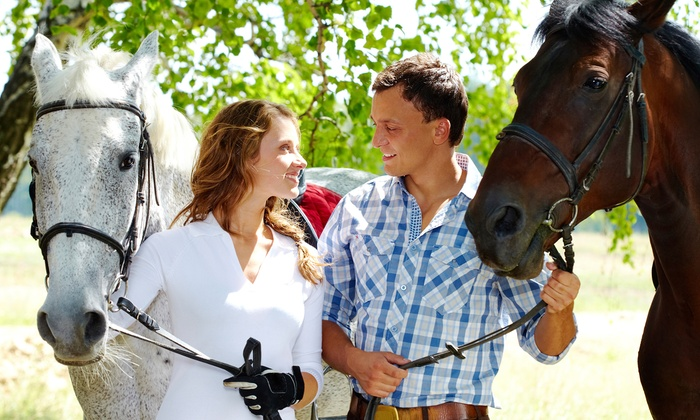 Equine Blvd. - Agawam Town: $105 for a Scenic Horseback Trail Ride for Two at Equine Blvd ($200 Value)