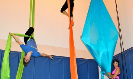 One-Hour Circus Arts Class at SkyZ the Limit (50% Off)